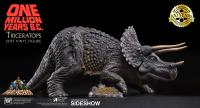 Gallery Image of Triceratops & Loana Collectible Set