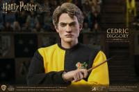 Gallery Image of Cedric Diggory (Tri-Wizard Version) Sixth Scale Figure