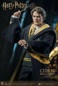 Gallery Image of Cedric Diggory (Deluxe Version) Sixth Scale Figure