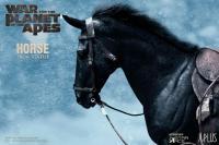 Gallery Image of Caesar Horse Statue