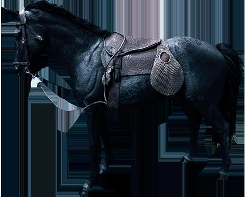 Star Ace Toys Ltd. Caesar Horse Statue