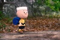Gallery Image of Charlie Brown Vinyl Collectible