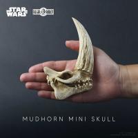 Gallery Image of Mudhorn Skull Statue