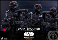 Gallery Image of Dark Trooper™ Sixth Scale Figure