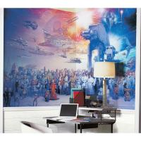 Gallery Image of Star Wars Saga Wallpaper Mural Mural