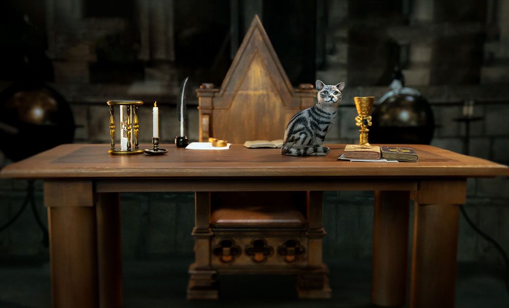 Gallery Feature Image of Minerva McGonagall (Desk Pack) Sixth Scale Figure Accessory - Click to open image gallery
