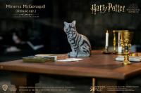 Gallery Image of Minerva McGonagall (Desk Pack) Sixth Scale Figure Accessory