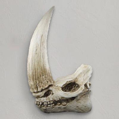 Mudhorn Skull Wall Decor