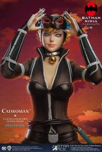 Gallery Image of Catwoman (Deluxe Version) Sixth Scale Figure