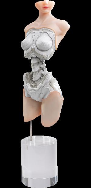 Android EL01 Torso ver.1 Figurine