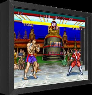 Street Fighter M. Bison vs. Sagat Shadow box art