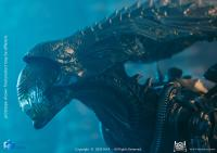 Gallery Image of Alien Queen (Battle Damaged) Figure