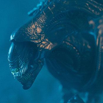 Alien Queen (Battle Damaged) Figure