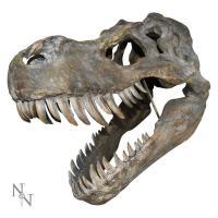 Gallery Image of Tyrannosaurus Rex Large Skull Wall Decor Mixed Media Statue