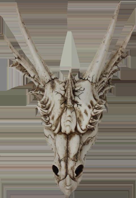 Nemesis Now The Last Dragon Skull Prop Replica