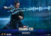 Gallery Image of Wenwu Sixth Scale Figure
