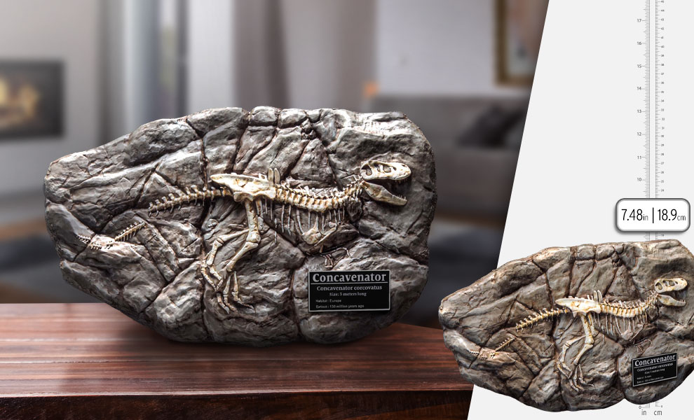 Gallery Feature Image of Fossil Replica - Click to open image gallery