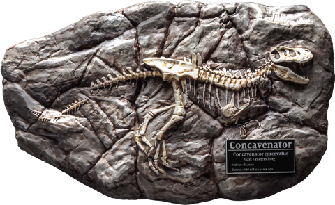 Star Ace Toys Ltd. Fossil Replica