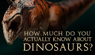 How much do you actually know about dinosaurs?