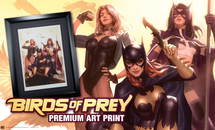 Birds of Prey Premium Art Print