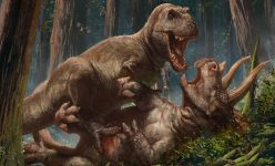 Behind the Scenes of the T-Rex vs Triceratops Premium Art Print