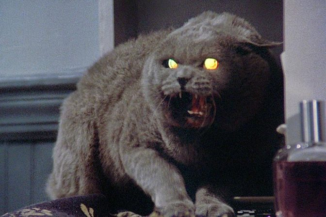 Paramount Pictures Begins Production on Pet Sematary