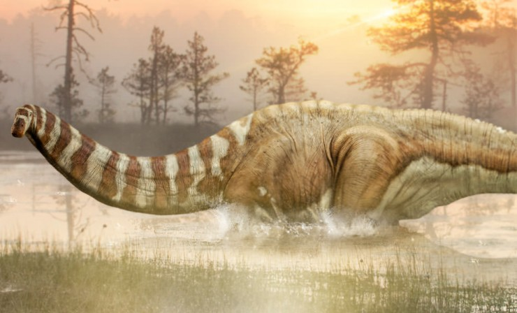 An Apatosaurus by any other name…