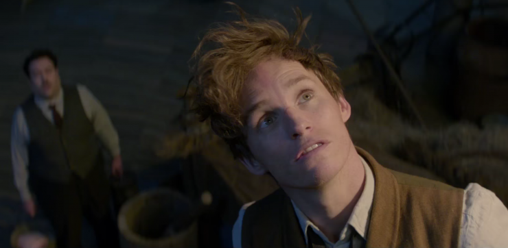 We finally have our first look at Fantastic Beasts and Where to Find Them.