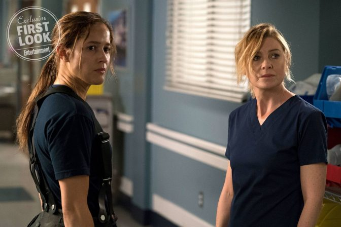 Grey's Anatomy Spinoff Officially Named