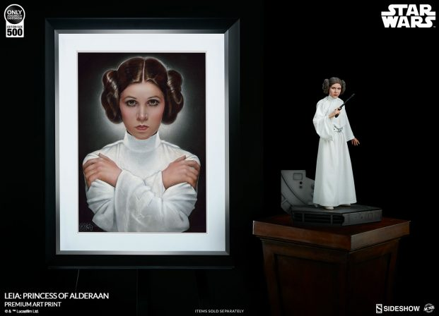 The Leia: Princess of Alderaan Fine Art Print Arrives from a Gallery Far, Far Away