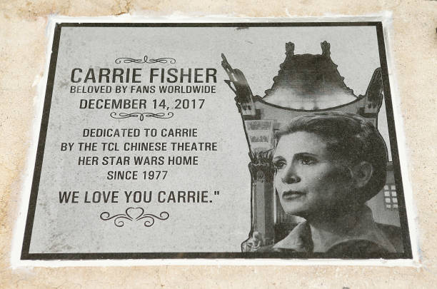 See Todd Fisher Reveal the Carrie Fisher Memorial at TCL Chinese Theatre