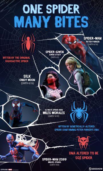One Spider, Many Bites