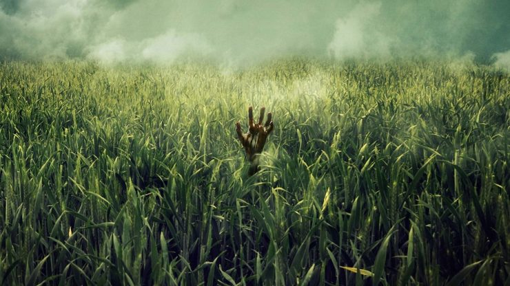 Netflix Thriller In the Tall Grass Sets Cast