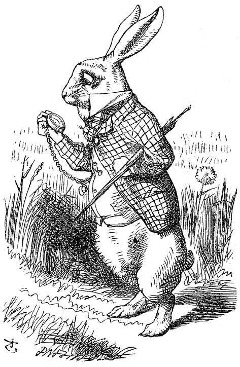 The History of Alice in Wonderland