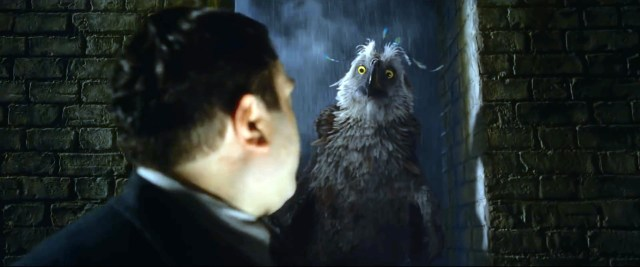 Fantastic Beasts Augurey Bird