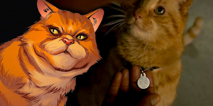 All About Captain Marvel's Cat- Chewie/Goose