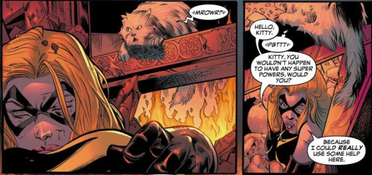 All About Captain Marvel's Cat