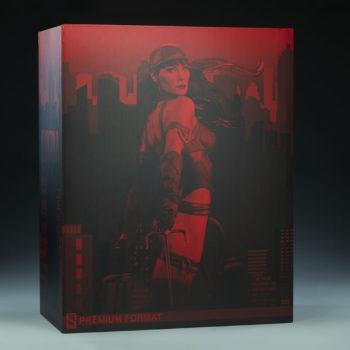 Elektra Premium Format Figure Box Closeup