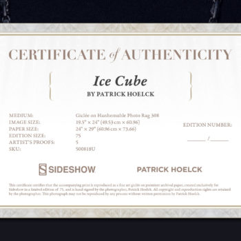 Ice Cube Deluxe Fine Art Print by Patrick Hoelck Certificate of Authenticity