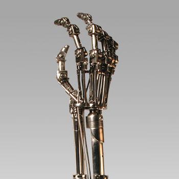 Endoskeleton Arm