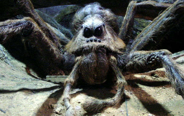 Top 10 Fictional Spiders- Aragog