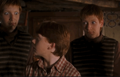Ron, Fred, and Georgy Weasley