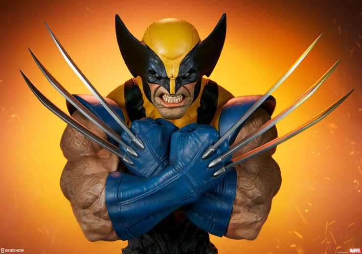 New Photos of the Wolverine Bust