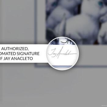 Zatanna Fine Art Print by Jay Anacleto Sideshow Collectibles