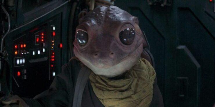 The Mandalorian Season 2- Frog Lady