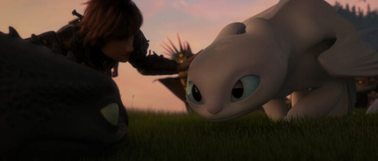 HIccup, the Light Fury, and Toothless