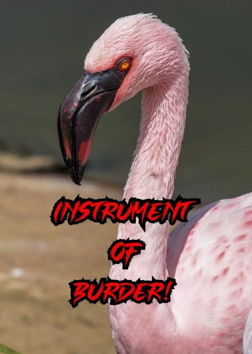 A flamingo with red eyes and black-and-red text overlaid on the animal that reads 'Instrument of Burder!'